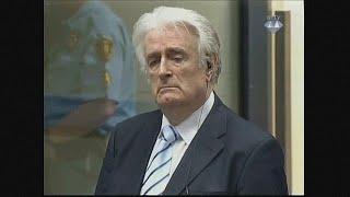 Radovan Karadzic appeals 40 year jail sentence
