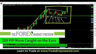 Trading Strategy - 200 PIP Move Caught on the Euro