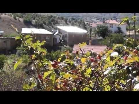 Malatya Hekimhan Çulhalı Köyü Halay Lavey Hayranın Olam