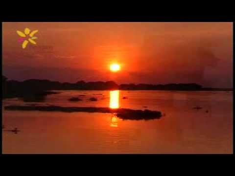 Paraguay Purahei - Che pykasumi