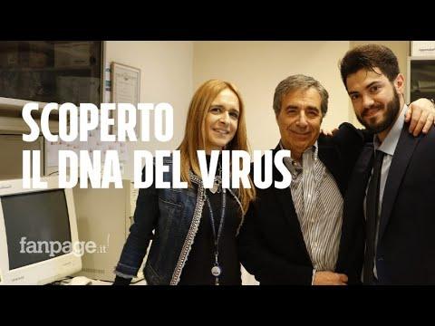 Coronavirus, i ricercatori italiani che ne hanno scoperto il Dna: 'Viene dai pipistrelli'