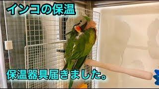 【ブログ】 https://ameblo.jp/heruman-ch/entry-12357199939.html 【関...
