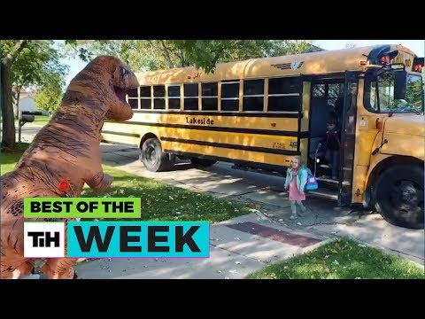 BEST OF THE WEEK - T-Rex Reunions?! | This Is Happening