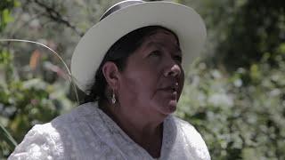 "Trailer ""Camino a la Hoyada"" - DOCUMENTAL"