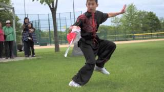 Soaring Eagle Kung Fu - Secrets