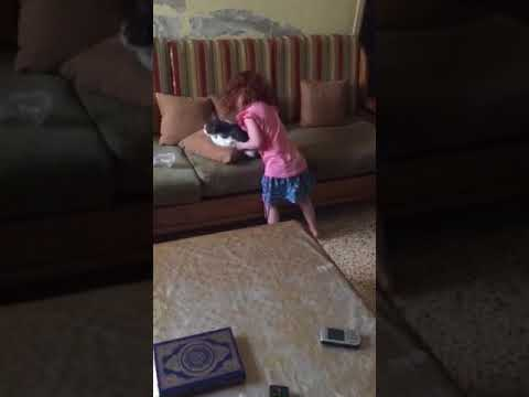 Baby having fun with a cat