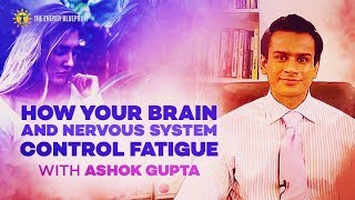How Your Brain And Nervous System Control Fatigue with Ashok Gupta and Ari Whitten