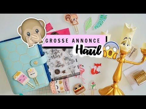 GROSSE ANNONCE + HAUL #18 - La fourmi créative, Craftelier...