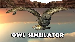 Owl Simulator Android  Gameplay 720p [HD]