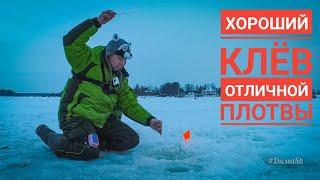 РЫБАЛКА 2021 Первая зимняя. Отличная ПЛОТВА зимой. ЛОВЛЯ плотвы НА легкую МОРМЫШКУ. #ДимаSh