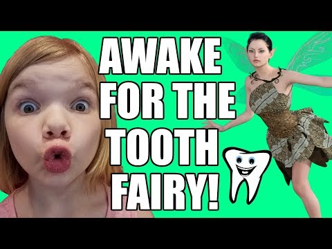 Awake for the Tooth Fairy! Staying up late! | Babyteeth More