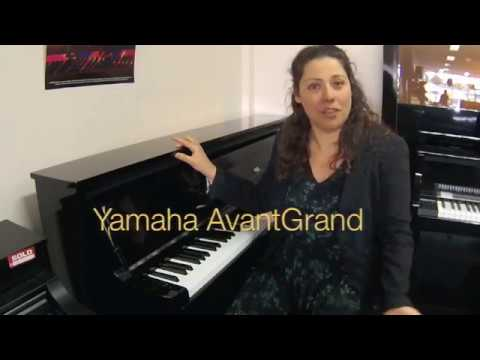 Yamaha Nu Vs Kawai Cs