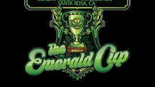 Emerald cup 2015 closeing Act, BEATS ANTIQUE