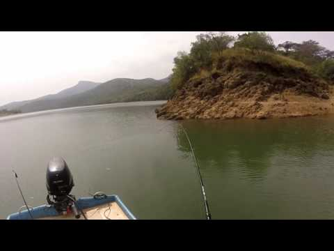 Fishing Nagel Dam South Africa And Swimming With Crocodiles