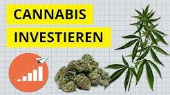 Wie in Cannabis investieren? Der grüne Rausch für Anleger? Untersucht