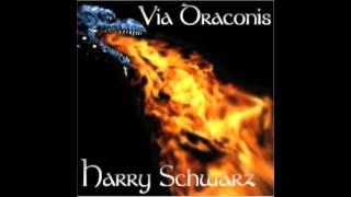 Harry Schwarz - Der Lauf