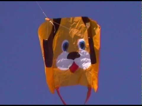 Lucky Dog Kite By Flying Wings Kites