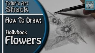 How to Draw a Hollyhock Flower