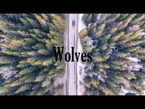 Wolves - Selena Gomez, Marshmello [LYRICS]