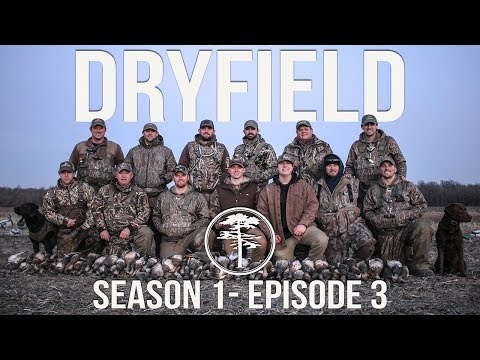 Duck Hunting- The BEST Gadwall Hunt on YouTube
