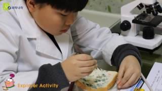 미생물 관찰