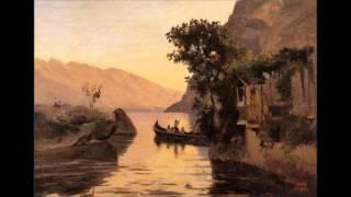 Schubert   Piano sonata D 537.  1-  Allegro ma non troppo