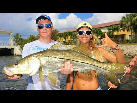 My DAD & future USMC Brother Catch BIG Inshore Snook during the Mullet Run!