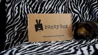 Unboxing September Bunny Box. A Guinea Pig/Rabbit Subscription Box thumbnail