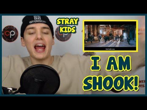 "Stray Kids ""Grrr 총량의 법칙"" Performance Video REACTION [IN LOVE]"