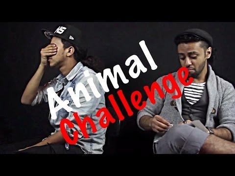 animal-challenge