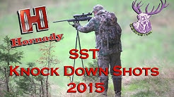HORNADY SST KNOCK DOWN SHOTS 2015