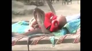 4 cobra protect sleeping baby