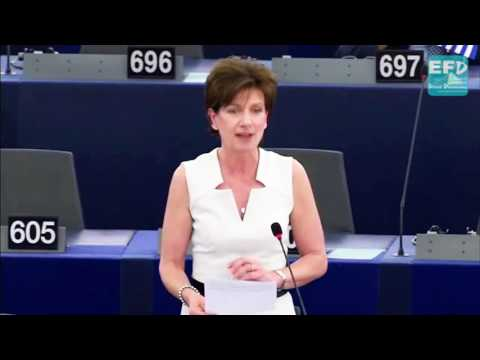 EU border and coast guard constructed to deal with the consequences of EU action - Diane James MEP