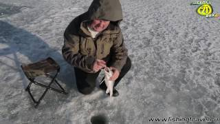 На Завидово с Алексеем Чернушенко. Зимняя рыбалка. Часть 2