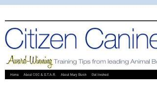How-to Earn A Canine Good Citizen Certification From Akc