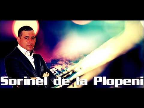 SORINEL DE LA PLOPENI -  MANEA CRIMINALA SUPER 2016