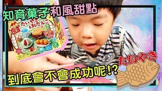 【知育菓子】#2  日式點心日式甜點 日式食物玩具 日本DIY   手作鯛魚燒 醬油丸子 彈珠汽水 草莓大福   手工糖果玩具   非 寿司 拉面 - 恩恩老師