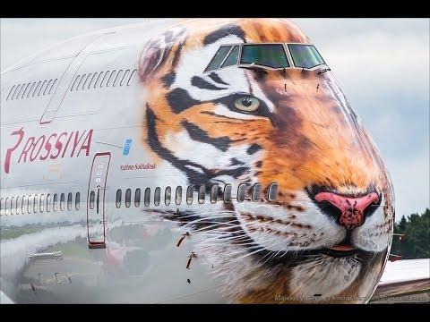 Первый рейс Тигролета в аэропорт Владивостока