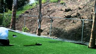 Artificial Dog Grass Installation - Backyard - La Mesa, CA - 10943