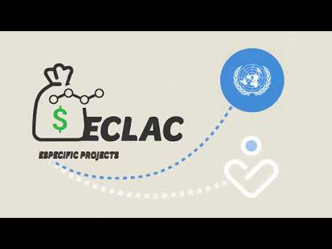 15. United Nations Economic Commission for Latin America and the Caribbean (ECLAC/CEPAL)