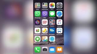 Apple iPhone SE-баг прошивки