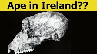 9 CRAZY Discoveries That Might Change History!