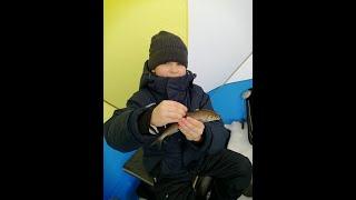 Рыбалка с сыном/Отдых на природе/Весенняя рыбалка
