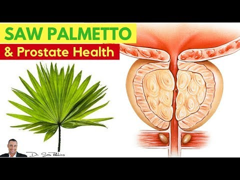 🌿 WARNING: The Nasty Side-Effect Of Saw Palmetto Use For Prostate Health (BPH) - By Dr Sam Robbins
