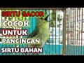 Suara Ampuh Sirtu Gacor Cocok Untuk Memancing Sirtu Macet Dan Sirtu Bahan  Mp3 - Mp4 Download