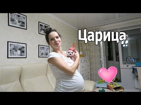 VLOG: Воспитание / Зарядка для беременной меня в 30 недель