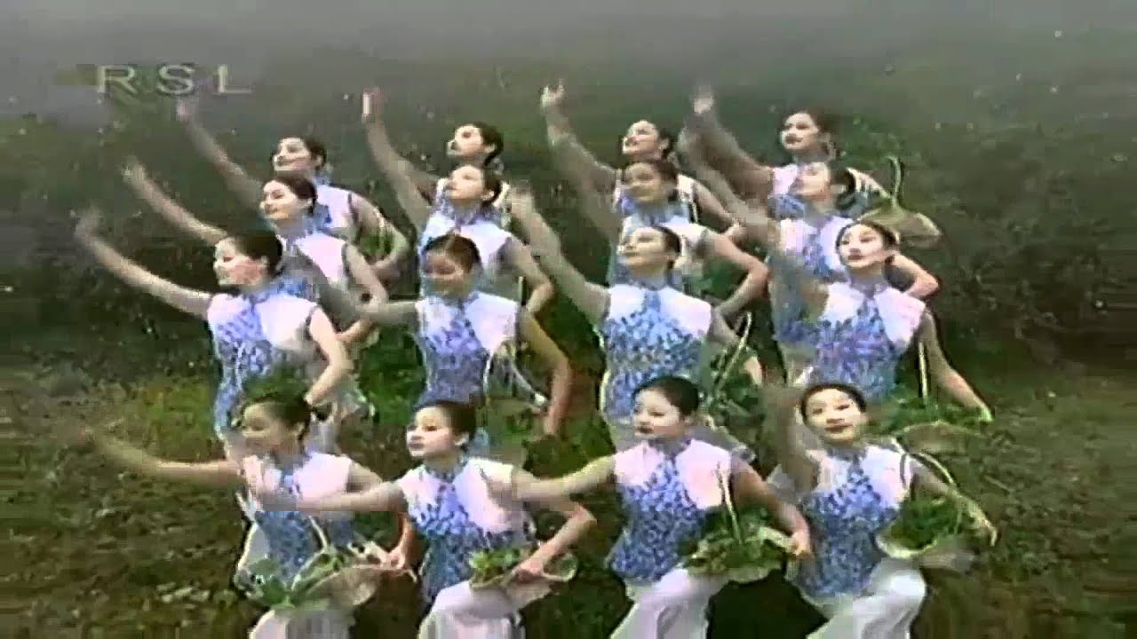 how to make chinese tea video