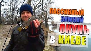 Ловля окуня зимой на спиннинг на силиконовые приманки в Киеве на 2-м шлюзе