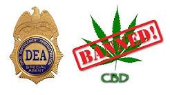 DEA BANS CBD! Non-THC Cannabis Oil As Schedule 1?!
