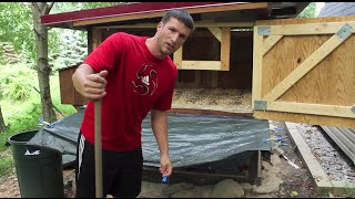 Backyard Chickens - Cleaning out the Coop